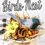 easy farmhouse centerpiece birds nest with text which reads Farmhouse Bird Nest