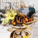 closeup of easy birds next craft idea with text which reads diy farmhouse birds nest