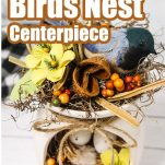 closeup of easy farmhouse craft upcycle idea with text which reads Farmhouse Bird Nest Centerpiece