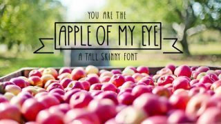 Apple Of My Eye Skinny Tall Font