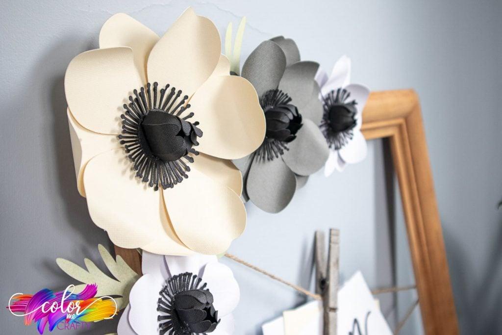 anemone frame for photos