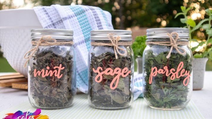 Easy Spice Jar Labels With Cricut Joy