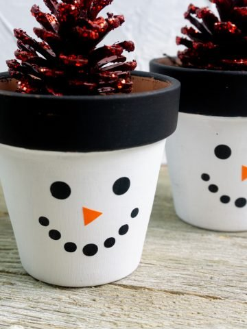 little planter with white base and snowman face on it with pine cones in the vases