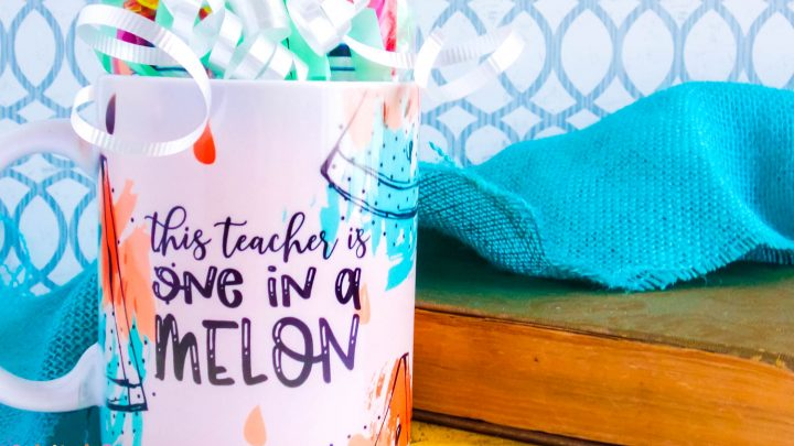 sublimation mug wrapped as a gift and says one in a melon in pinks and teals with black words on a teal