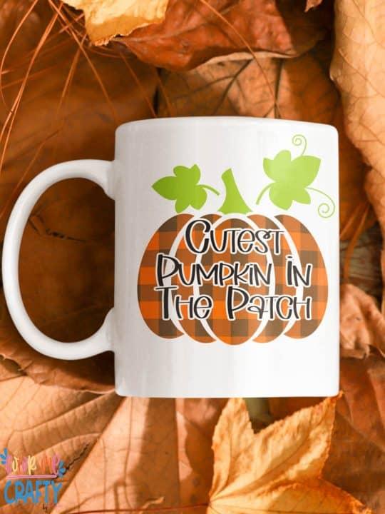 cutest pumpkin in the patch on a coffee mug